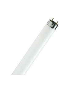 Фото Osram Lumilux Cool Daylight 30W/865 (895 мм.)